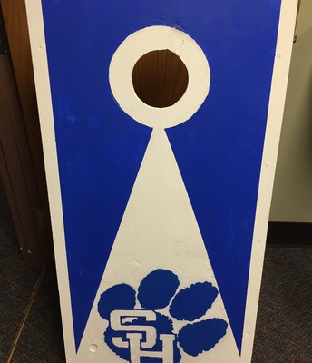 Awesome Panther Cornhole game by Mr. Pool