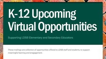 Virtual Opportunities for extended learning