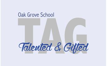 Fall TAG Advisory Council Window
