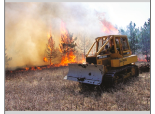 Hear from the Experts - WDNR Forestry Lecture Series: Burning Questions