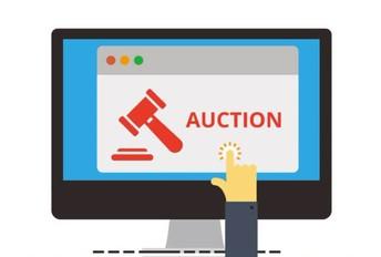 PTA: Silent (Online) Auction