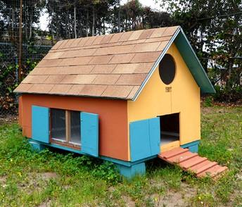Chicken Coop Completed