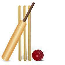 Monday 10th May - KS2 Cricket Day