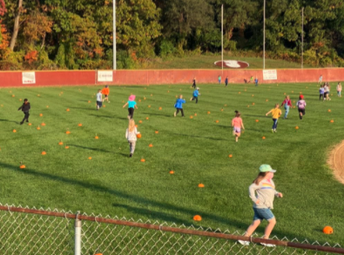 Pumpkin Picking from the Baseball Field