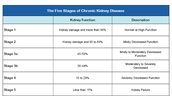 Stage 1 and 2 Of Chronic Kidney Disease
