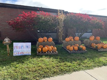 Pumpkin Patch - Get your pumpkins here!