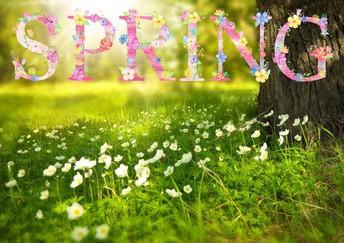 2019 Spring Teacher Training Dates