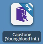Capstone eBooks