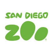 Live Animal Cams at the San Diego Zoo