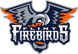 March 16th ~ Guest Readers Flint Firebirds!!