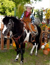 Pony Pictures: October 15 and October 16