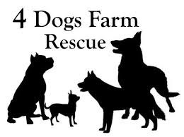 Donate Supplies to 4 Dogs Farm Rescue in Mexico!