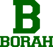 Borah Marching Band