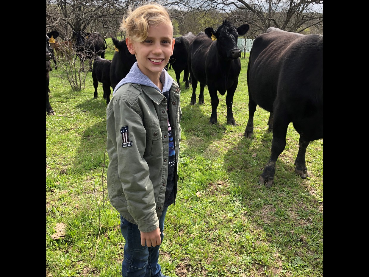 Asher Vakidis in a Field with a Cow