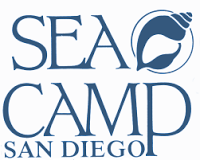 7th/8th Grade Educational Trip to SEACAMP
