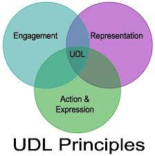 Co-teaching 2.0- UDL-based lesson planning