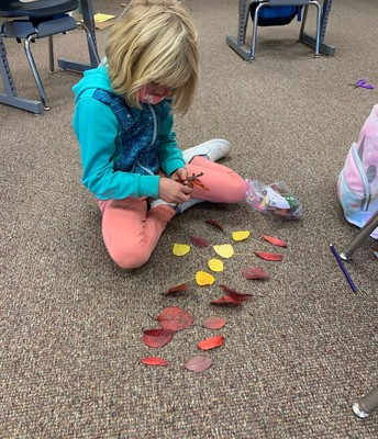 Sorting and comparing
