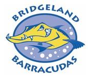 Bridgeland Barracudas v. Lakes on Eldridge Dolphins