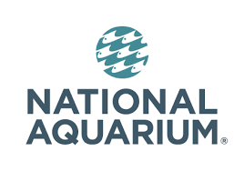 NEW: Virtual Aquarium Field Trip