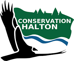 Conservation Halton - Controlled Burn