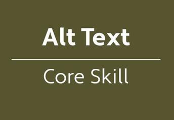 21. UMN Digital Access Skill: Alternative Text