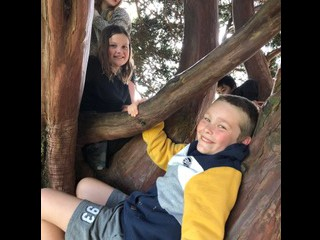 Happy kids in the tree!