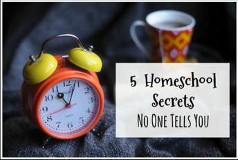 5 Wonderful Homeschool Secrets No One Will Tell You