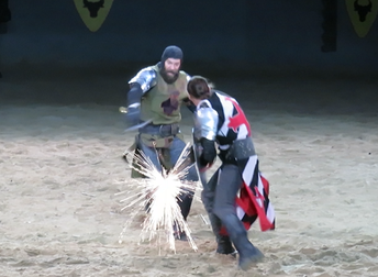 The Green Knight should have won.