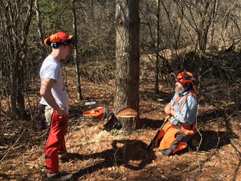 Chainsaw Problem-Solving