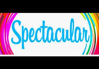 Spectacular...Team Member - Kelly Cunningham - Instructional Aide