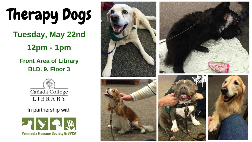 "Pictures of therapy dogs. The text says ""Therapy Dogs, Tuesday May 22nd from 12pm to 1pm, front area of the library."
