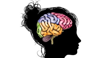 What are Cognitive Processes?