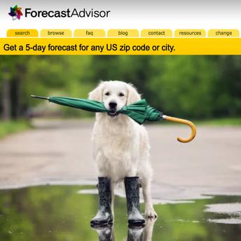 ForecastAdvisor logo and image of dog holding an umbrella in its mouth