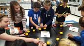 Lemon battery in Science