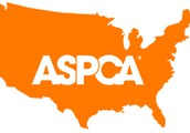 This is a picture of the US with the ASPCA logo on it.