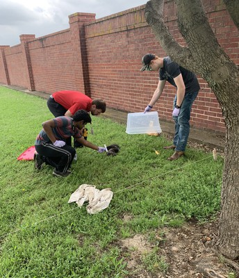 Body Farm in Forensic Science
