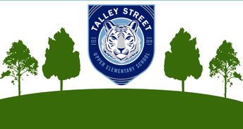 Talley Street Landscaping and Outdoor Space Update