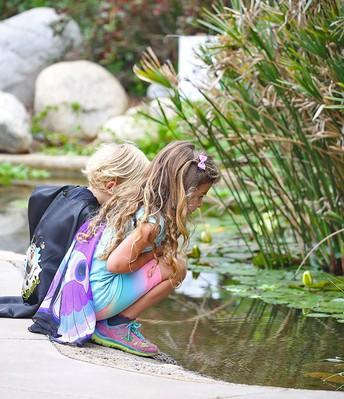 Water Conservation Garden Class