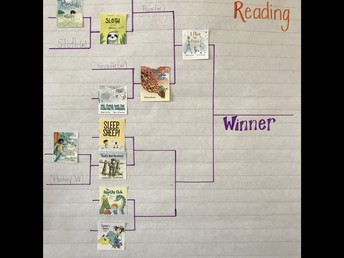 Voting on our favourite Forest of Reading books.