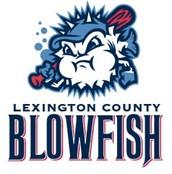 2017 Blowfish Baseball Reading Program