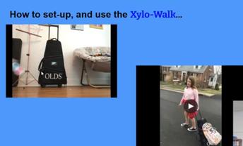 Xylo-Walk