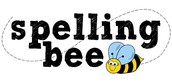 MS Spelling Bee - Results from the Preliminary Round
