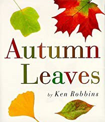Autumn Leaves Bookcover