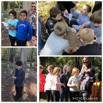 2nd Grade Field trip to FernCliff!