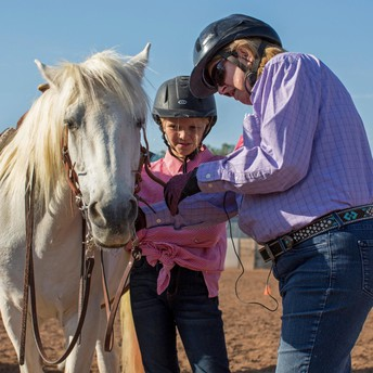 Equine - New Horsemanship Advancement Level Workshops