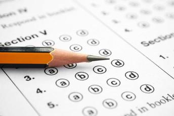 4. Assessment Item Types