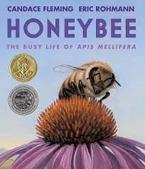 Honeybee: The Busy Life of Apis Mellifera, written by Candace Fleming and illustrated by Eric Rohmann