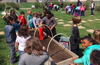 Ms. Johnson started a garden club at Georgian Heights ES