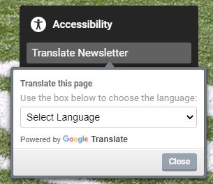 Google Translate button