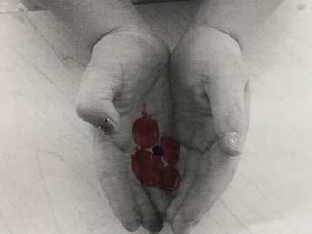 Poppy in our hand